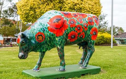 Meet Poppy – the new cow on the block!